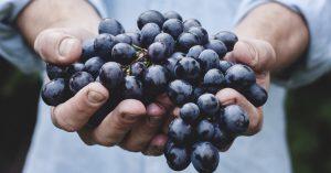 چربی سوزی با انگور ؛ آیا انگور معجزه جدید چربی سوز برای بدن است؟